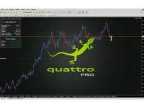 Приветствую тебя на проекте Quattro Pro